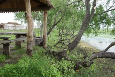 Отдых и туризм на Припяти